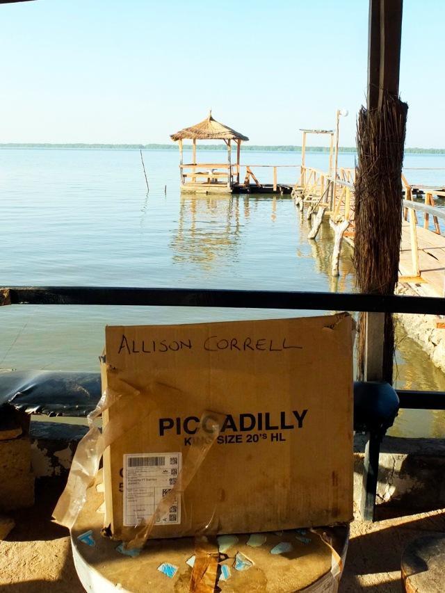 ALISON CORRELL2_DSF3993 copy