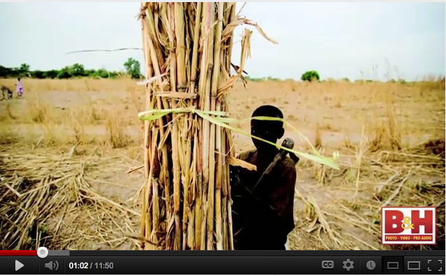 'A Short Walk in the Gambian Bush - a 930km African odyssey' - on the road shots