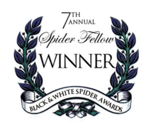 Black & White Spider Awards 2012