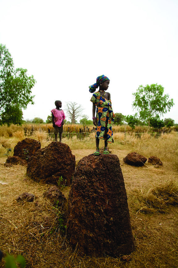 Kerr Batch Stone Circles, The Gambia, West Africa