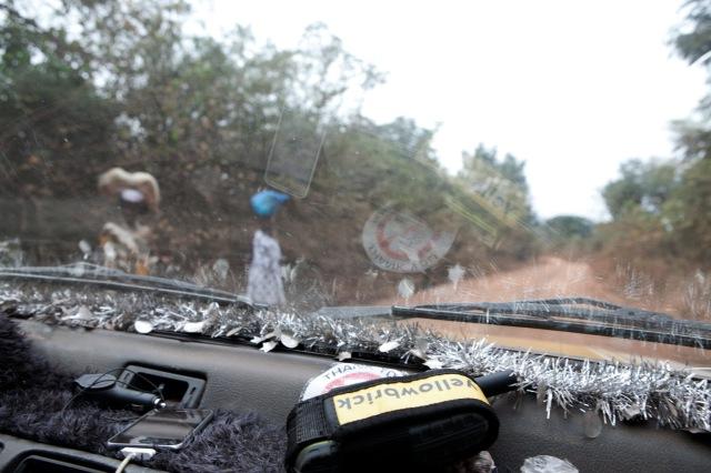 YellowBrick Tracking Devices © Jason Florio - on the road to Mali Ville, Fouta Djallon, Guinea
