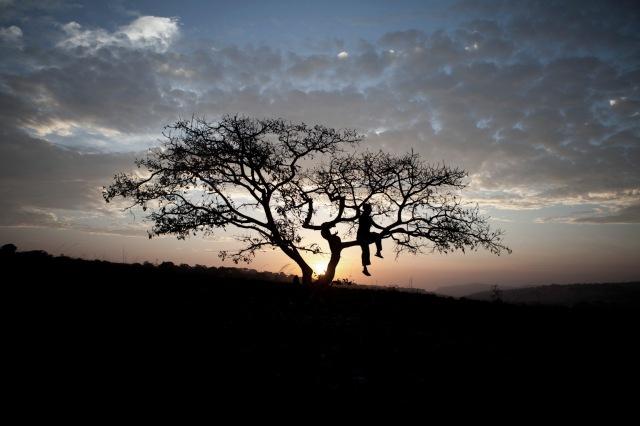HJF-DAWN-TREE-HORE-DIMMA_MG_1308 copy © Jason Florio